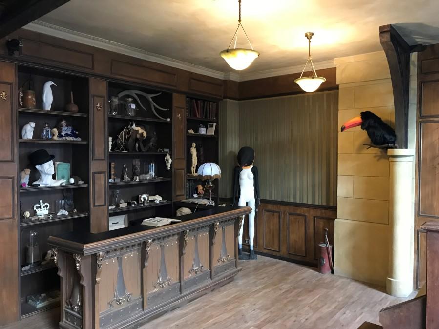 cabinet curiosités3